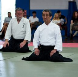 Why is Aiki Jujutsu Different to Other Martial Arts?