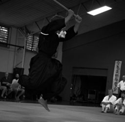 Daito-ryu & Other Aiki Arts